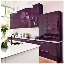 Kitchen Colours With White Cabinets Best 25 Purple Cabinets Ideas On Pinterest Purple Kitchen