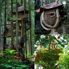 three house 25 awesome tree houses activities