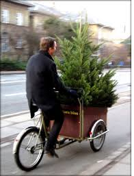 christmas tree delivery delivery jpg
