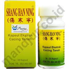 Obat Kapsul Cacing Tanah han ning kapsul ekstrak cacing tanah