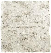 birch wrapping paper faux birch wrapping paper placemats
