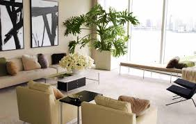 home decor plant living room skillful indoor living room plants picture