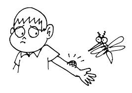 coloring page mosquito bite img 11758