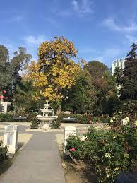 Wpa Rock Garden by Trees U2013 Hollyhocks And Heart Shaped Rocks