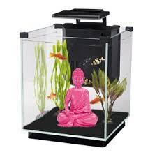 aquarium bureau aquariums capacité hydraulique jusqu à 10 gallons wayfair ca