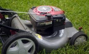 the essentials of fall lawn care nola com