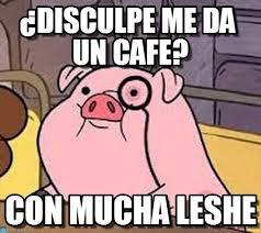 Cafe Meme - disculpe me da un cafe pig meme en memegen