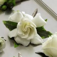 gardenia flower delivery gardenias flower delivery in peoria exclusive flowers and gifts llc