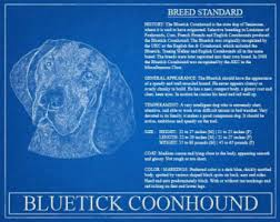 bluetick coonhound gifts boxer portrait boxer art boxer wall art boxer print