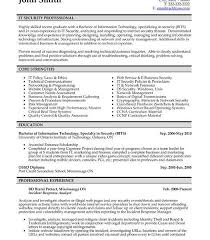 Latest Resumes Format by Pretty Design Professional Resume Format 13 25 Best Ideas About