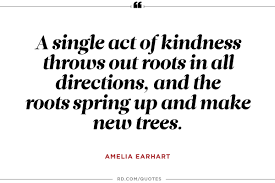 quotes about education and kindness 10 amelia earhart quotes to propel you to greatness