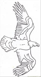 eagle line drawing 3 coloring page free eagle coloring pages
