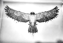 hawk tattoo meaning