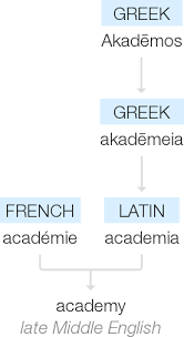 what are the origins of the word academy quora