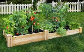 vegetable garden box home outdoor decoration