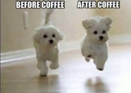 Funny Coffee Memes - 50 of the funniest coffee memes on the internet