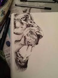 fineliner lion more tigers tattoos pinterest lions drawings