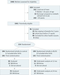 effect of complementary feeding on infant growth and overweight
