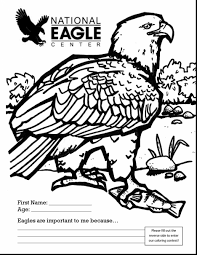 awesome bald eagle clip art black and white with bald eagle