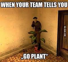 Counter Strike Memes - go plant noob no not that plant counter strike know your meme