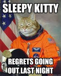 Sleepy Kitty Meme - curiosity killed the cat i m still here bitch sleepy kitty