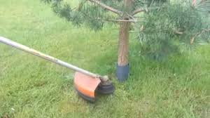 How To Cut Weeds In Backyard How To Cut Grass Around Trees Without Hitting Bark Brush Cutter