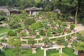 Botanical Gardens El Paso El Paso Landscaping Paulele House