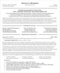 Channel Sales Manager Resume Sample by Professional Manager Resume 49 Free Word Pdf Documents