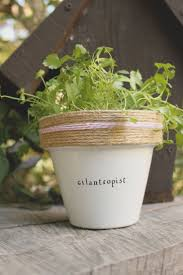 165 best plant puns images on pinterest