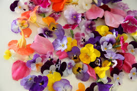 Where To Buy Edible Flowers - where to buy wedding cakes permasil com