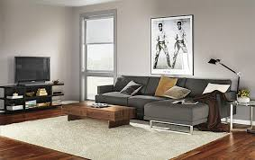 living room chaise home living room ideas