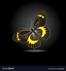 beautiful gold butterfly with shadow vector image