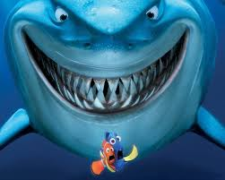 eating habits great white sharks