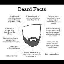 Meme Beard Guy - beard facts meme guy