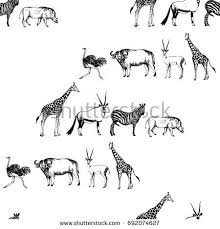 sketch of bird stock images royalty free images u0026 vectors