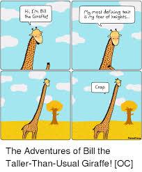 Giraffe Hat Meme - giraffe hat meme 20382 baidata