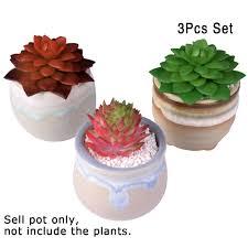 Cute Succulent Pots Online Shop Cute Indoor Garden Pots Wedding Favors And Gifts