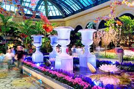 Bellagio Botanical Garden Sohm Photografx Image Of Bellagio Botanic Garden Las Vegas