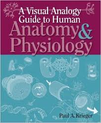 Anatomy And Physiology Pdf Books A Visual Analogy Guide To Human Anatomy U0026 Physiology Pdf Free Download
