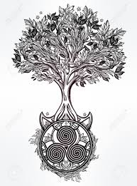 beautiful drawing of tree of vector