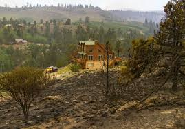 Utah forest images Utah representative claims logging could have lessened forest fire jpg