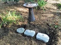 pet memorial garden stones new memorial pet garden at st stephen s