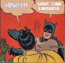 Mosquito Meme - sorry i saw a mosquito meme