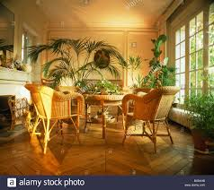 cane chairs and lush green houseplants in french townhouse dining