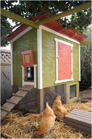 Backyard Chicken Coop Ideas Backyard Backyard Chicken Coop Plans Marvelous Best 25 Backyard