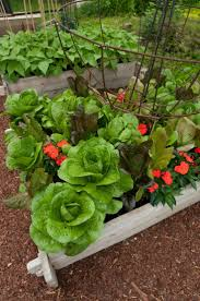 best beautiful vegetable gardens images on pinterest raised garden