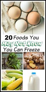 20 foods you can freeze save money on groceries money saving