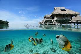 luxury hilton bora bora nui resort french polynesia luxury