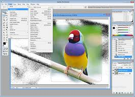 adobe photoshop free download full version for windows xp cs3 adobe photoshop cs2 professional image editing
