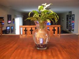 Cheap Clear Vases For Centerpieces by Vases Interesting Tall Clear Vase Centerpiece Ideas Remarkable